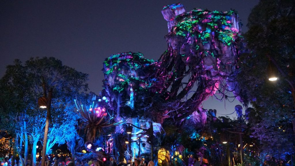 Nighttime at Pandora