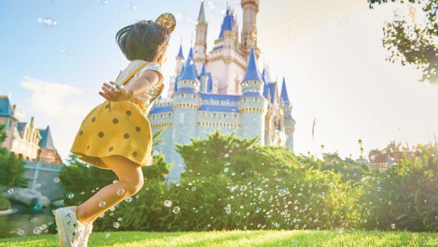 Florida Resident Discover Disney Ticket